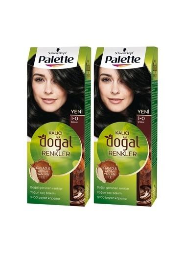 Palette Palette Kalıcı Doğal Renkler 1-0 Siyahx 2 Paket Renkli